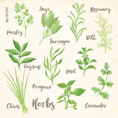 Herbs recipe